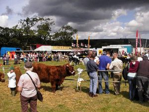 Danby Agricultural Show @ Danby | Danby | New York | United States