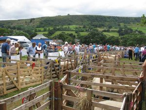 Rosedale Show @ Rosedale Abbey | Rosedale Abbey | England | United Kingdom